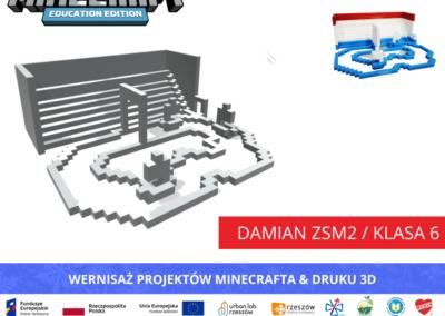 Damian ZSM2 _klasa 6